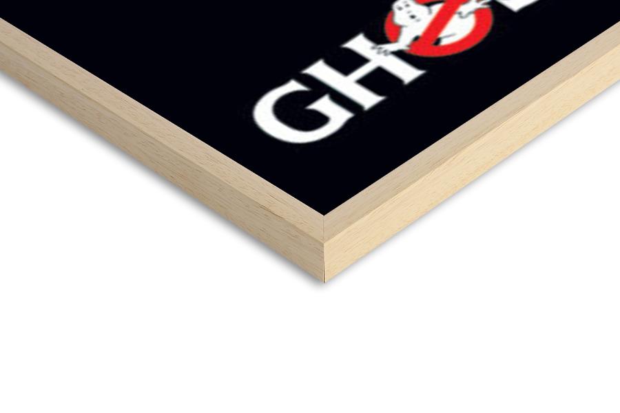 Plakát GHOSTBUSTERS - logo