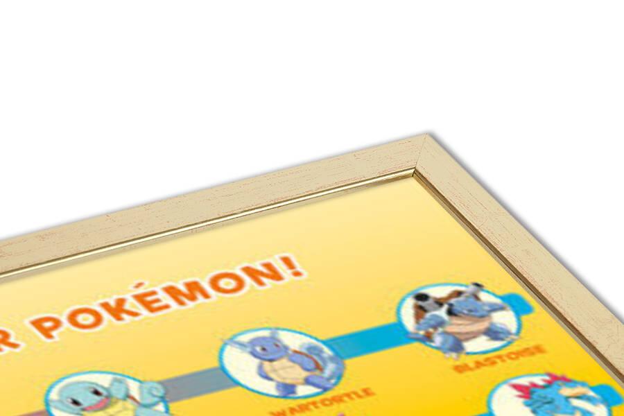 Plakát  Pokémon - Partner Pokémon