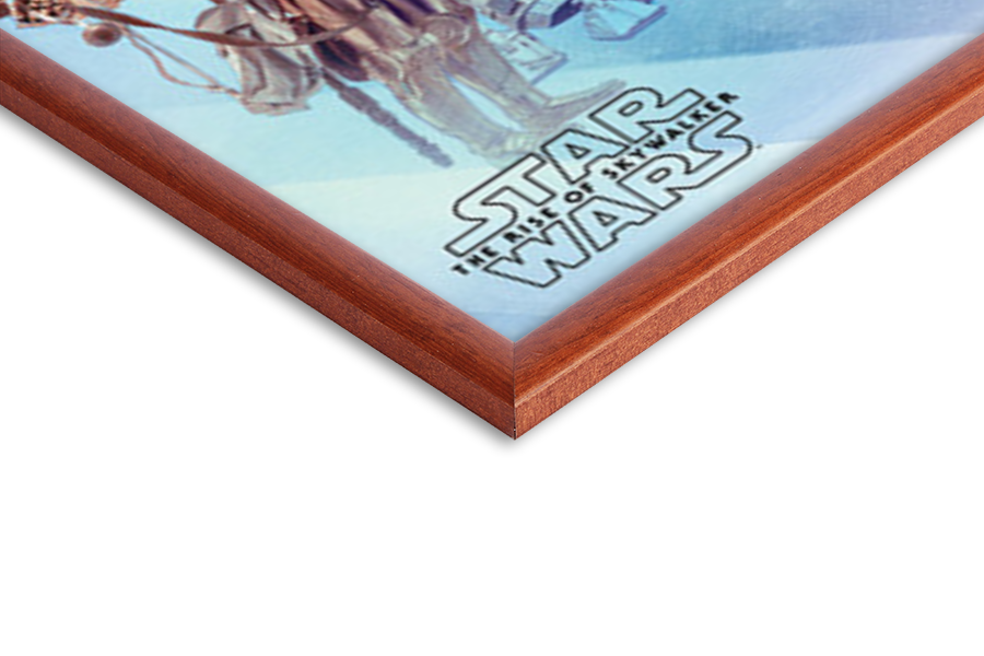 Plakát Star Wars: Vzestup Skywalkera - Rey