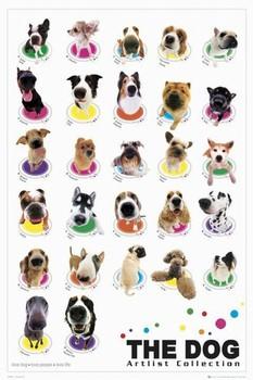 THE DOG - compilation plakáty | fotky | obrázky | postery