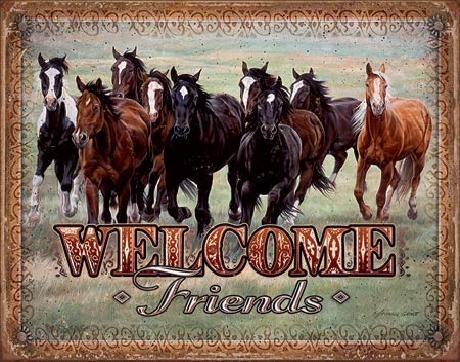 Posters Plechová cedule WELCOME - HORSES - Friends, (40 x 31,5 cm)