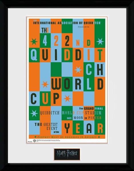 Posters Harry Potter - Quidditch World Cup rám s plexisklem