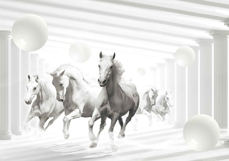 Posters Fototapeta Koně bílé koule, (368 x 254 cm) 368x254 cm - 115g/m2 Paper