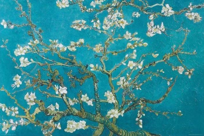 Posters Plakát, Obraz - Vincent van Gogh - Almond Blossom Aan Remy 1890, (91,5 x 61 cm)