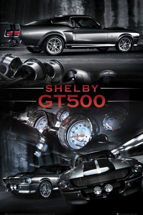 Posters Plakát, Obraz - Ford Shelby - Mustang gt 500, (61 x 91,5 cm)