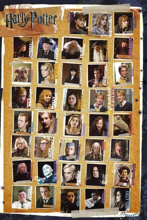 Posters Plakát, Obraz - HARRY POTTER 7 - characters, (61 x 91,5 cm)
