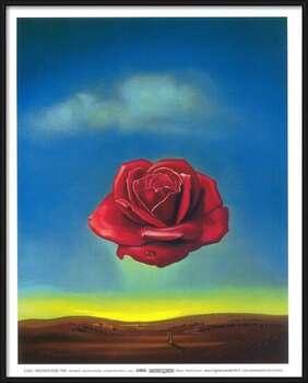 Rámovaný plakát Meditative Rose, 1958