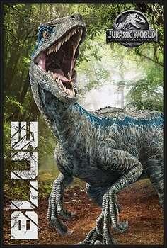 Rámovaný plakát Jurassic World Fallen Kingdom - Blue