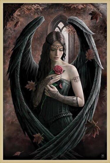 Plakát Anne Stokes - angel rose