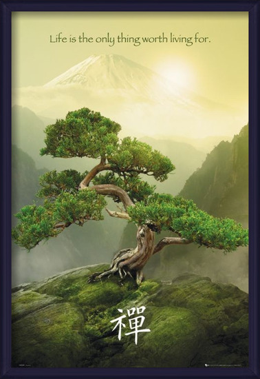Plakát Zen