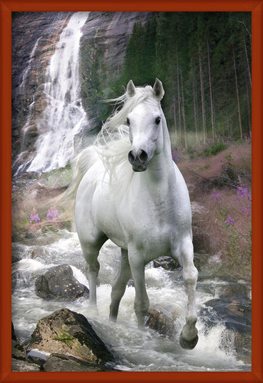 Plakát Bob Langrish - waterfall