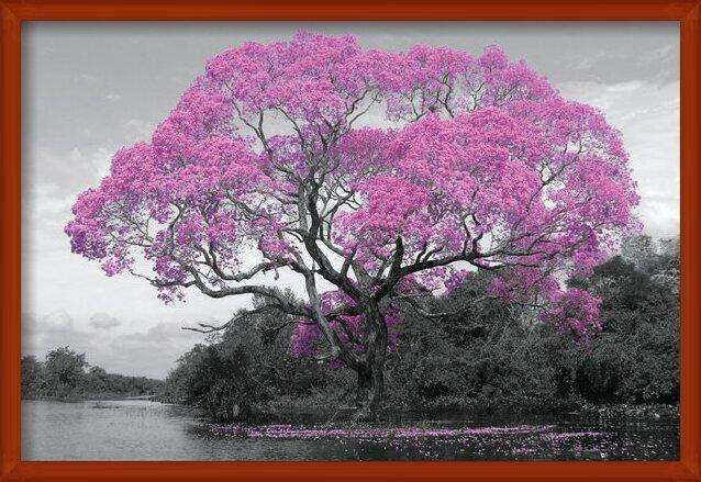 Plakát Strom - Pink Blossom
