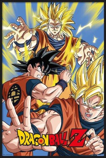 Plakát  Dragon Ball Z - Goku
