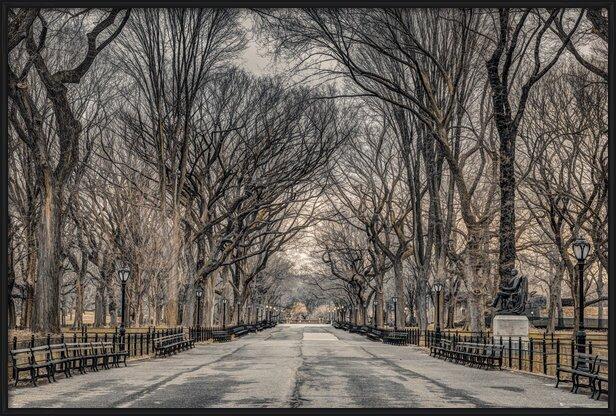 Plakát  Assaf Frank - New York Central Park