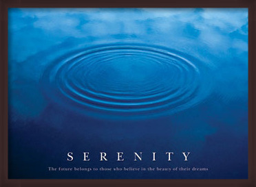 Plakát Serenity - the future ...