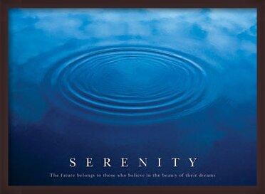 Plakát  Serenity - the future ...