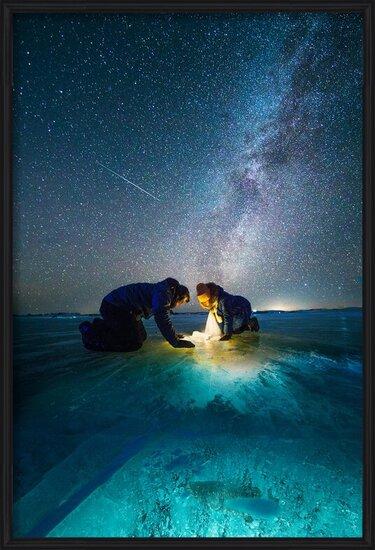 Umělecká fotografie The fish