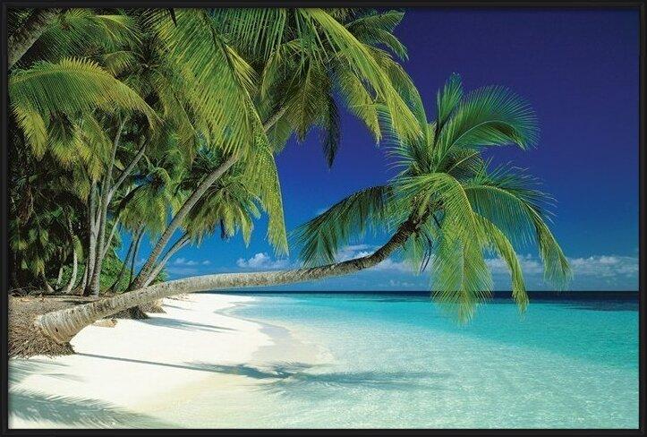 Plakát  Maledives