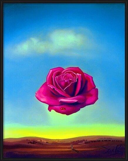 Obrazová reprodukce  Salvador Dali - Medative Rose