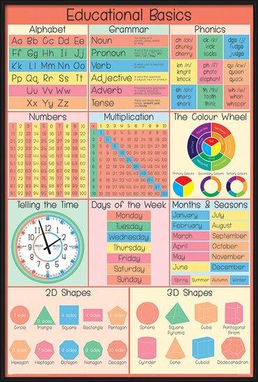 Plakát  Educational Basics