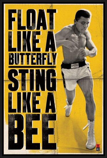 Plakát  Muhammad Ali - vznášet se jako motýl