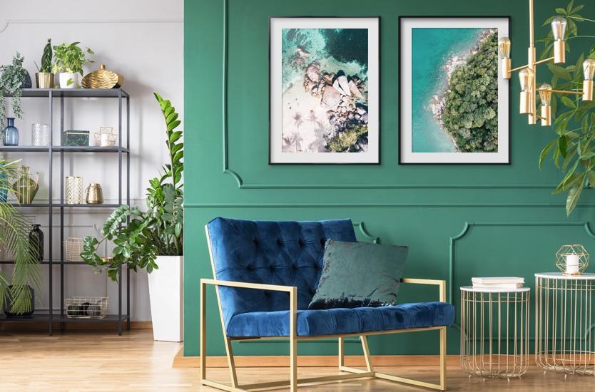 Umělecká fotografie Blue & Broccoli