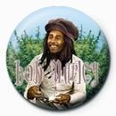 BOB MARLEY - rollin