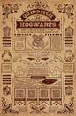 Harry Potter - Quidditch At Hogwarts