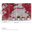 Kamenná stěna s červenými květinami