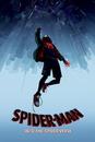 Spider-Man: Paralelní světy - Fall