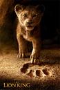 Lví Král - Future King