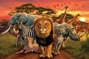 African kingdom - africké království
